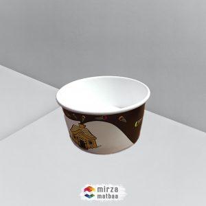 dondurma cup2